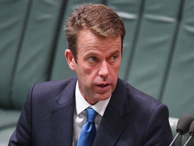 Minister for Social Services Dan Tehan.