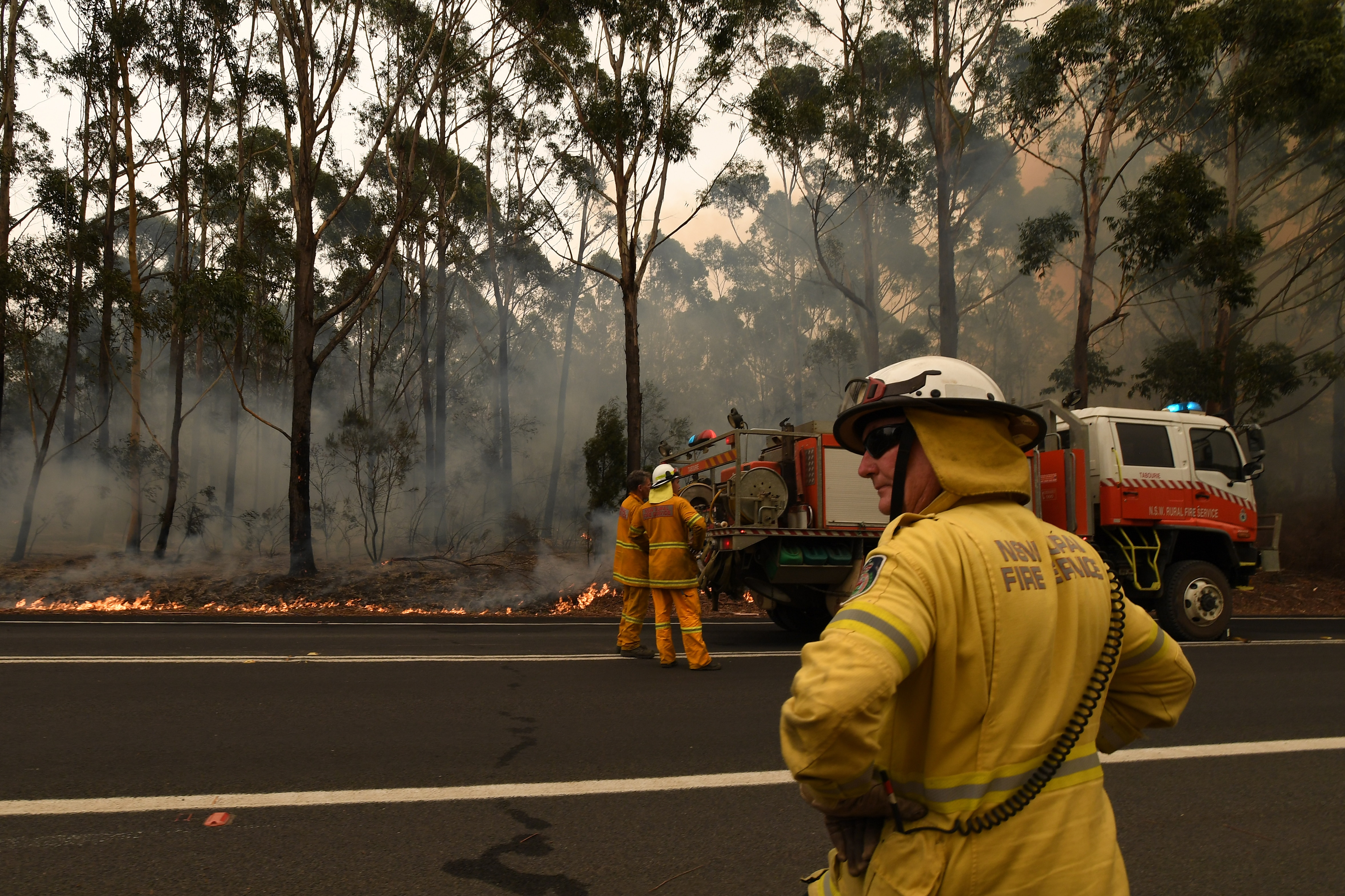 Firefighters are continuing to battle dozens of blazes in NSW and Victoria.