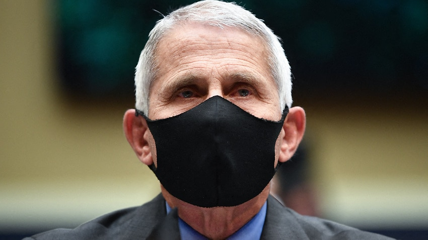 Image for read more article 'Who is Anthony Fauci and why is the White House targeting the top infectious diseases expert?'