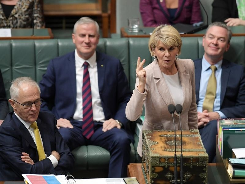 Australia's foreign minister Julie Bishop quits in fallout of PM's ouster