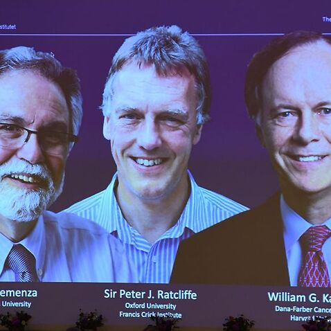 The winners of the 2019 Nobel Prize in Physiology or Medicine.