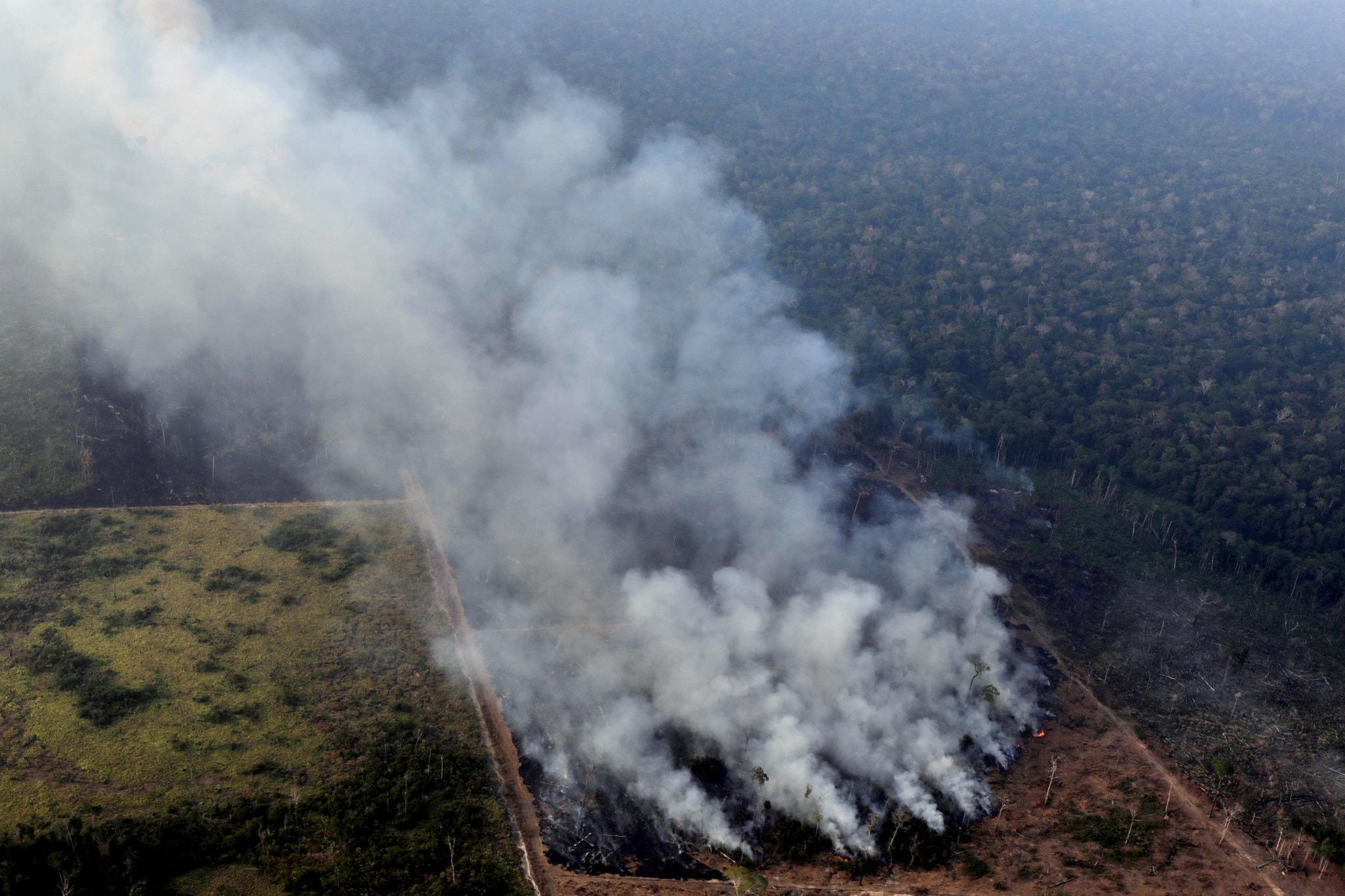 A fire in the Amazon rain forest near Porto Velho, Rondonia State, Brazil.