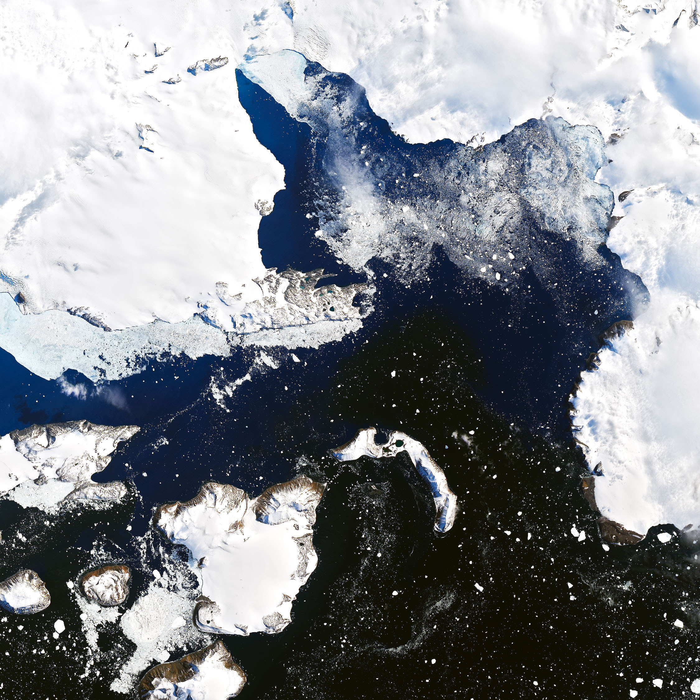 A satellite image of Eagle Island in Antarctica, taken 4 February.