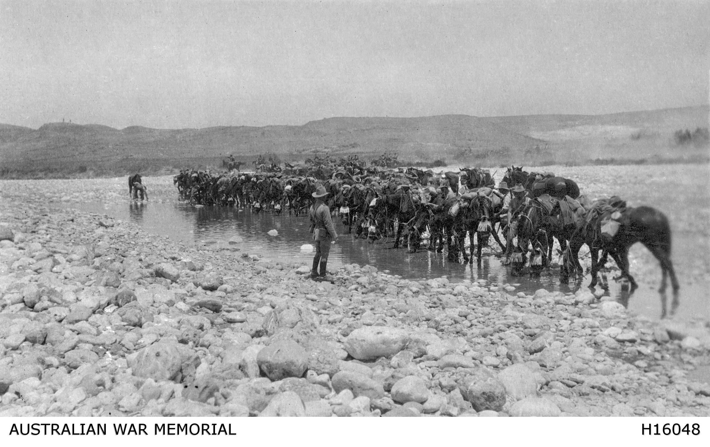 Light Horsemen watering their horses in Esani, circa 1916