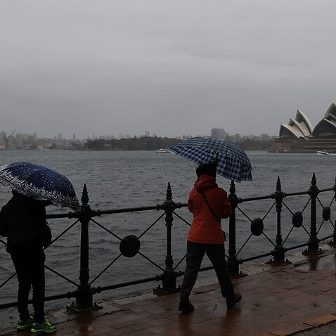 People shelter under umbrellas as rain continues to fall in Sydney.