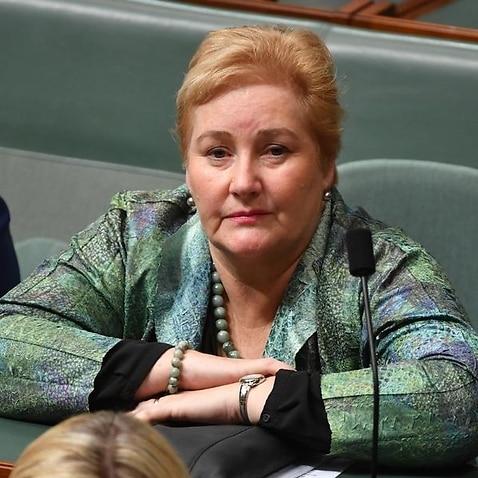 Federal Liberal MP Ann Sudmalis announced she won't recontest her NSW south coast seat.