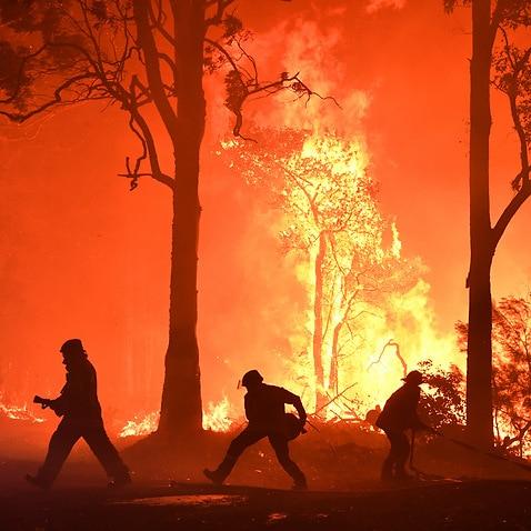 RFSボランティアとNSW消防救助隊員は、ブラックサマーの山火事の最中にシドニー南部の山火事と戦います。