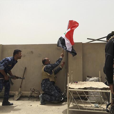 Humanitarian crisis developing outside Fallujah: aid agency