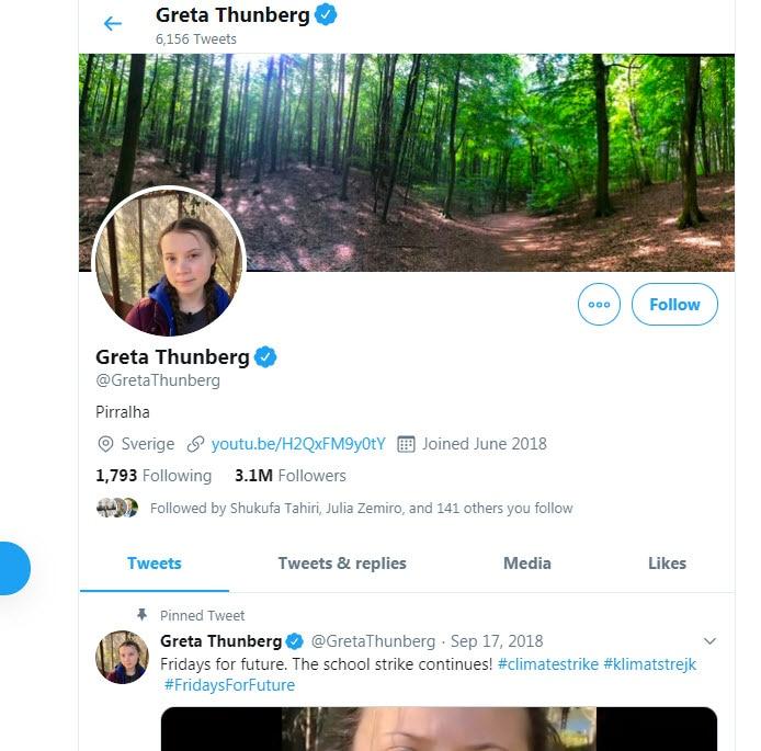 Greta Thunberg changed her Twitter bio to 'Pirralha.'