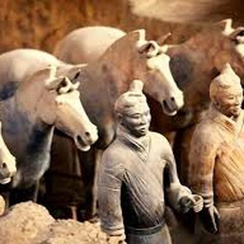 Qin Warriors