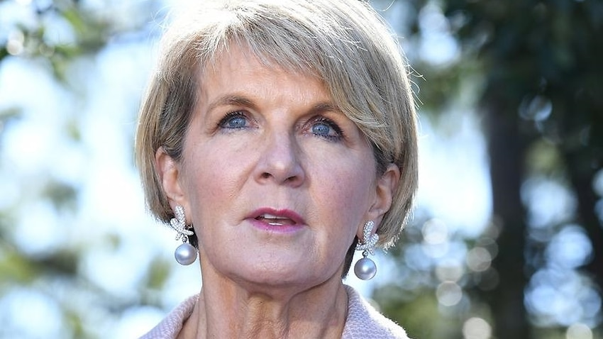 Foreign Minister Julie Bishop has put her hand up to run as leader if the party goes to a spill motion.