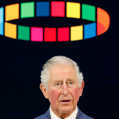 Prince Charles addresses the World Economic Forum in Davos, Switzerland.