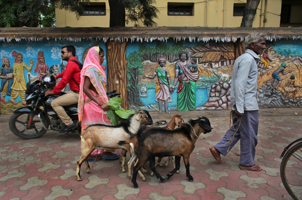 A couple walk with their livestock past murals depicting scenes from the tribal belt of Hazaribagh, India, a poor and socially conservative part of Hindu politician Jayat Sinhas constituency.