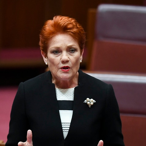 One Nation party leader Pauline Hanson makes a statement after a vote to suspend Australian Greens leader, Senator Richard Di Natale from the Senate at Parliament House in Canberra, Tuesday, November 27, 2018. (AAP Image/Lukas Coch) NO ARCHIVING