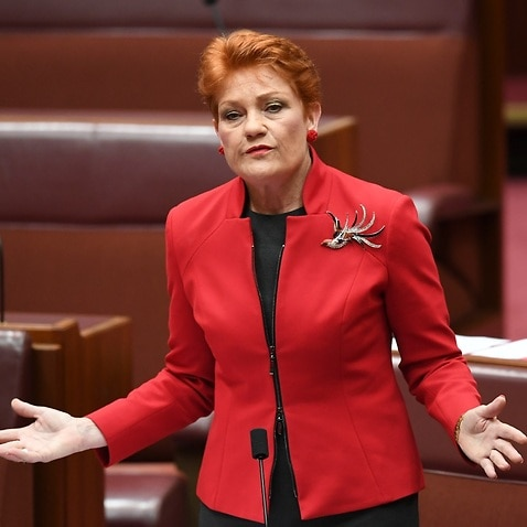 One Nation Senator Pauline Hanson speaks during the Same Sex Marriage debate in the Senate chamber at Parliament House in Canberra, Tuesday, November 28