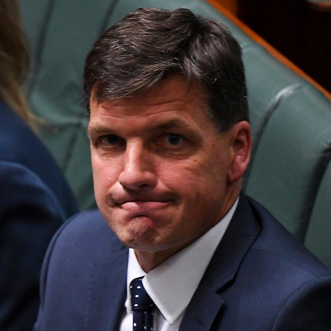 Australian Energy Minister Angus Taylor reacts during House of Representatives Question Time at Parliament House in Canberra, Tuesday, November 26, 2019. (AAP Image/Lukas Coch) NO ARCHIVING