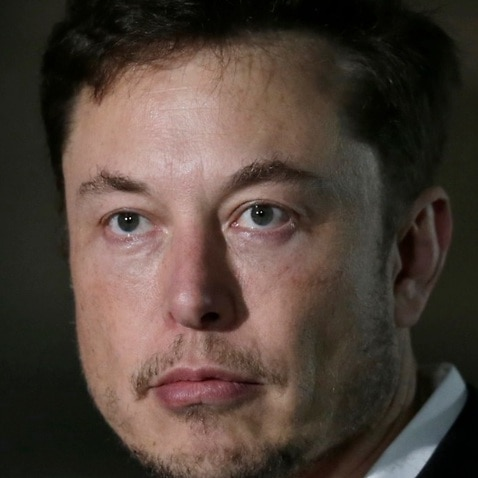 Combo image of cave expert Vernon Unsworth and Tesla CEO and founder Elon Musk