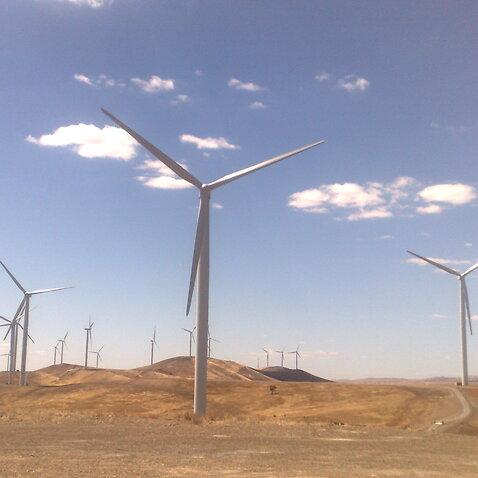 South Australia renewables