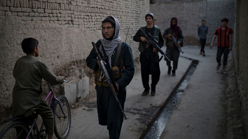 Image for read more article 'Taliban killed 13 Hazaras in 'cold-blooded executions', says Amnesty International '