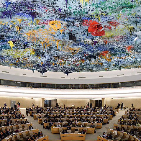 The United Nations Human Rights Council.