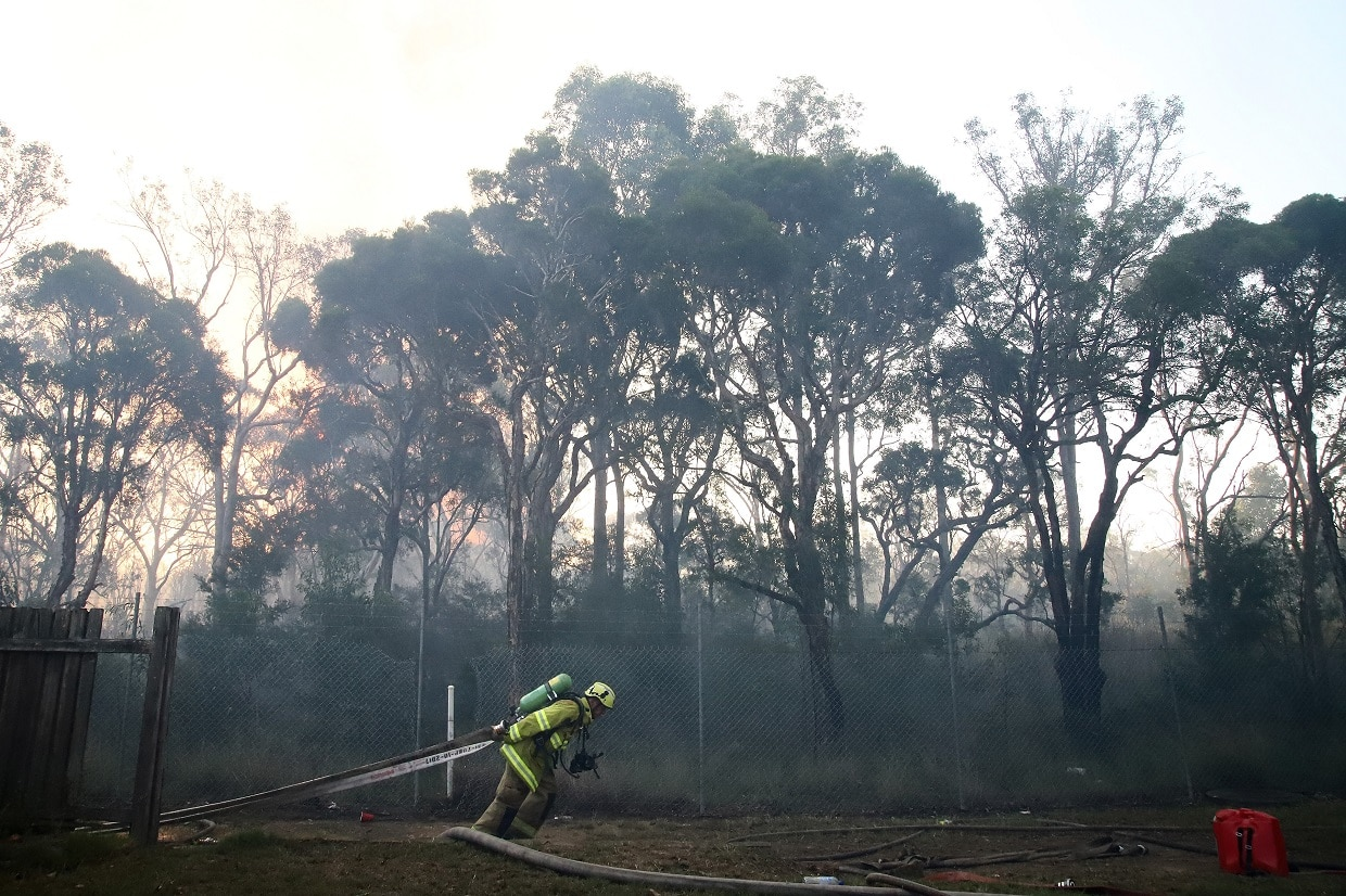 Sydney bushfire still out of control and may have been deliberately lit