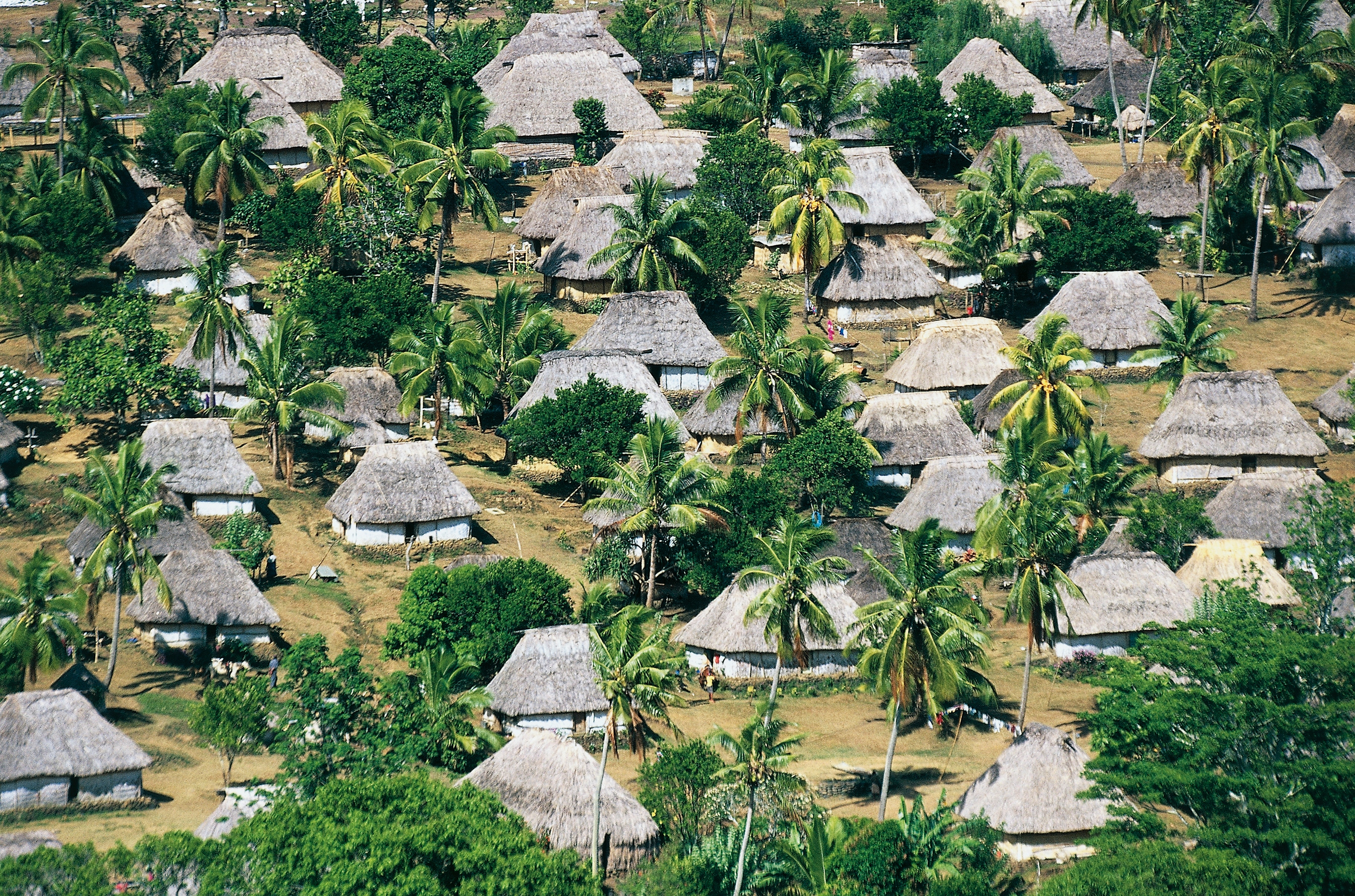 Traditional Fijian thatched huts