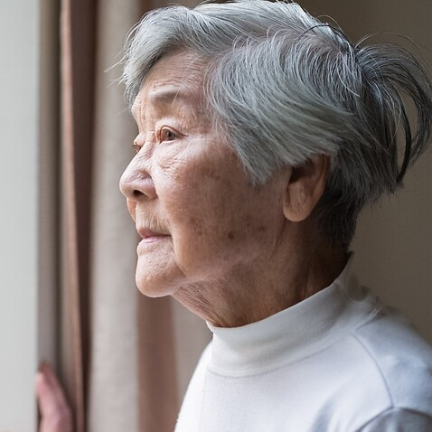 Some social services such as Meals Plus in Parramatta have been able to help older Chinese immigrants cope with daily challenges.