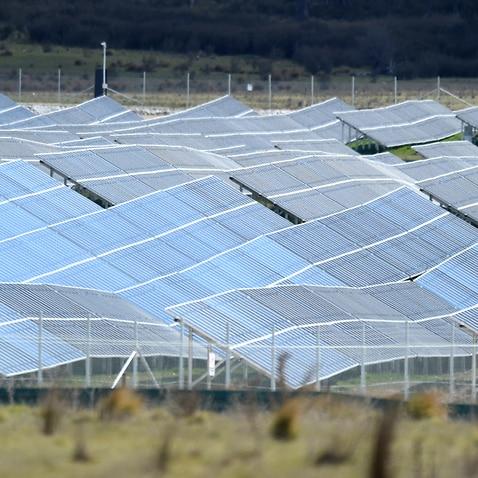A solar farm in Canberra.