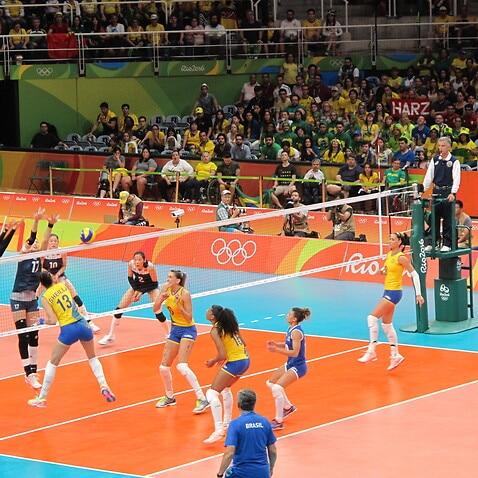 Volley Brazil