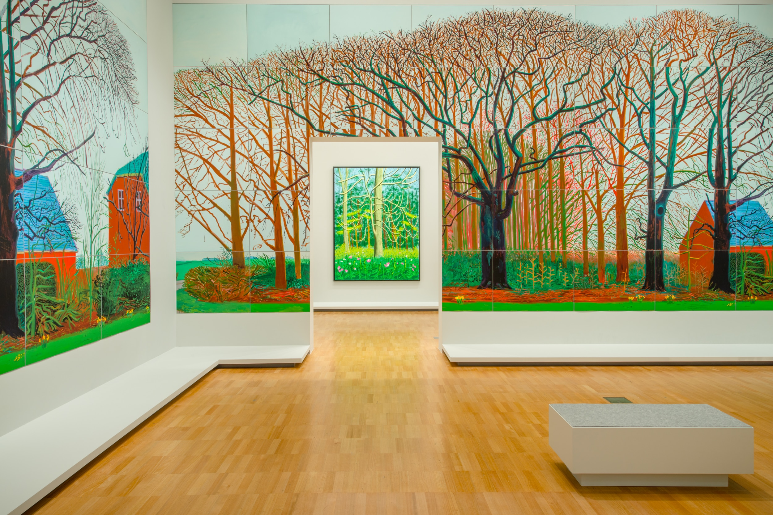 D Exhibition : David hockney digital art exhibition comes to australia