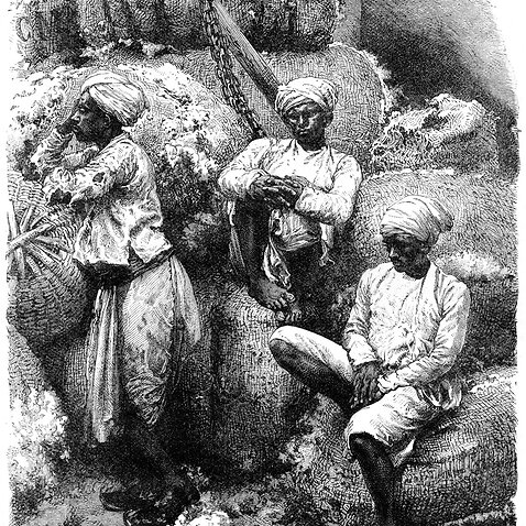 This is a representative Photo A cotton market in Bombay, India, 19th century.