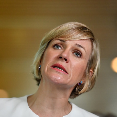Independent MP Zali Steggall at Parliament House in Canberra.