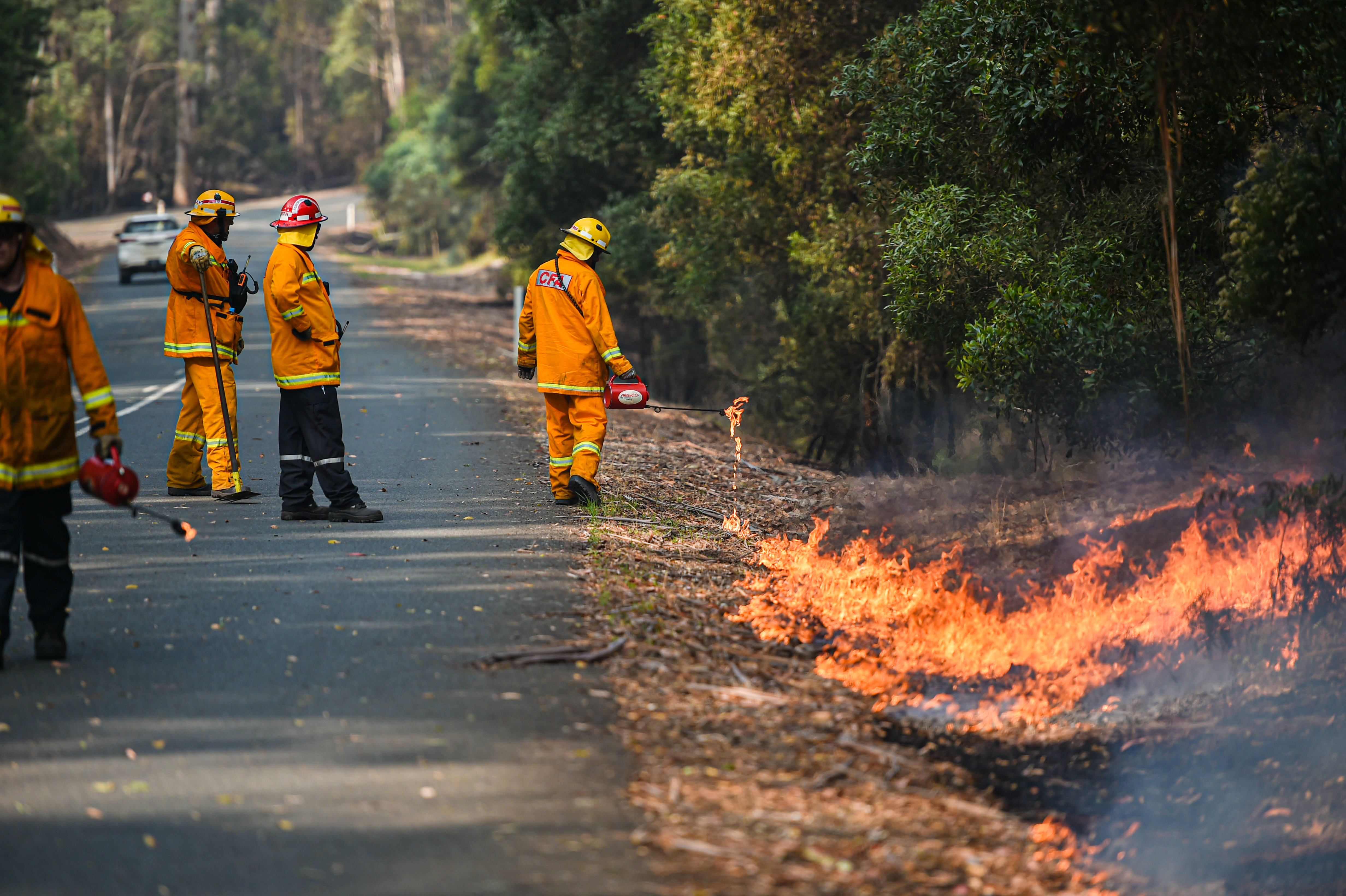 CFA strike teams performing controlled burning west of Corryong, Victoria.