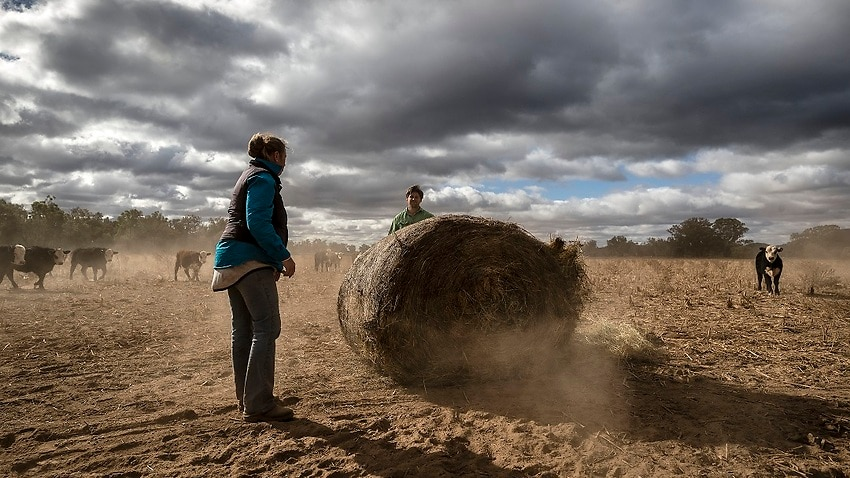 Image for read more article ''Beyond time for action': Australian farmers call for climate change plan'