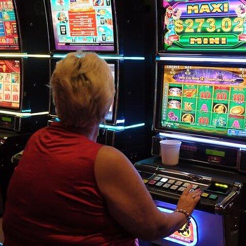 Gamblers play poker machines, known as pokies