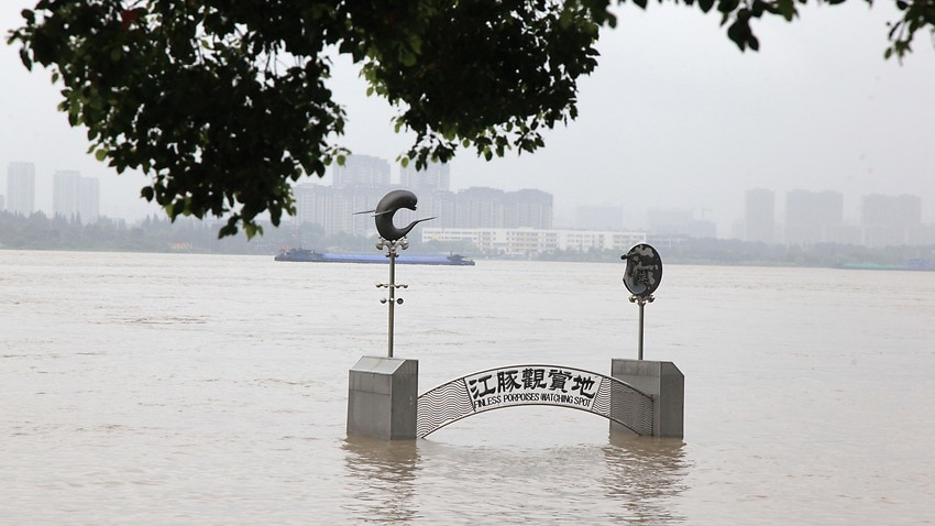 Image for read more article 'China rushes to contain devastating floods amid heaviest rainfall in decades'