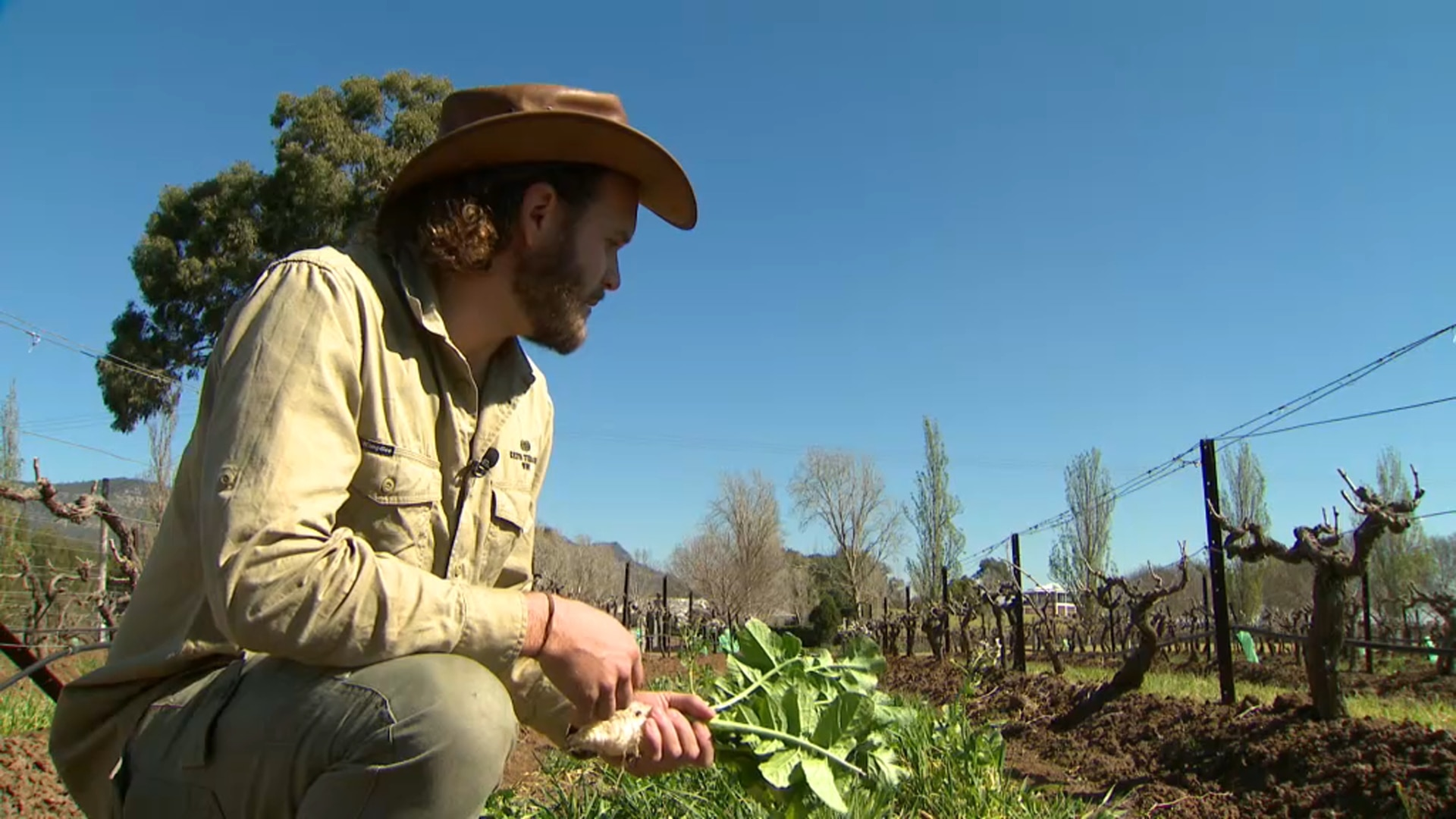 Alisdair Tulloch is using regenerative agriculture, both to which both address the climate crisis and alleviate the impact of the drought.