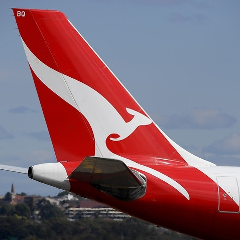 The transport union has called for a full investigation into how Qantas handled a coronavirus outbreak at Adelaide Airport.