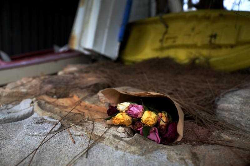 Cecilia Haddad murder: Devastated family speak as police hunt person of interest