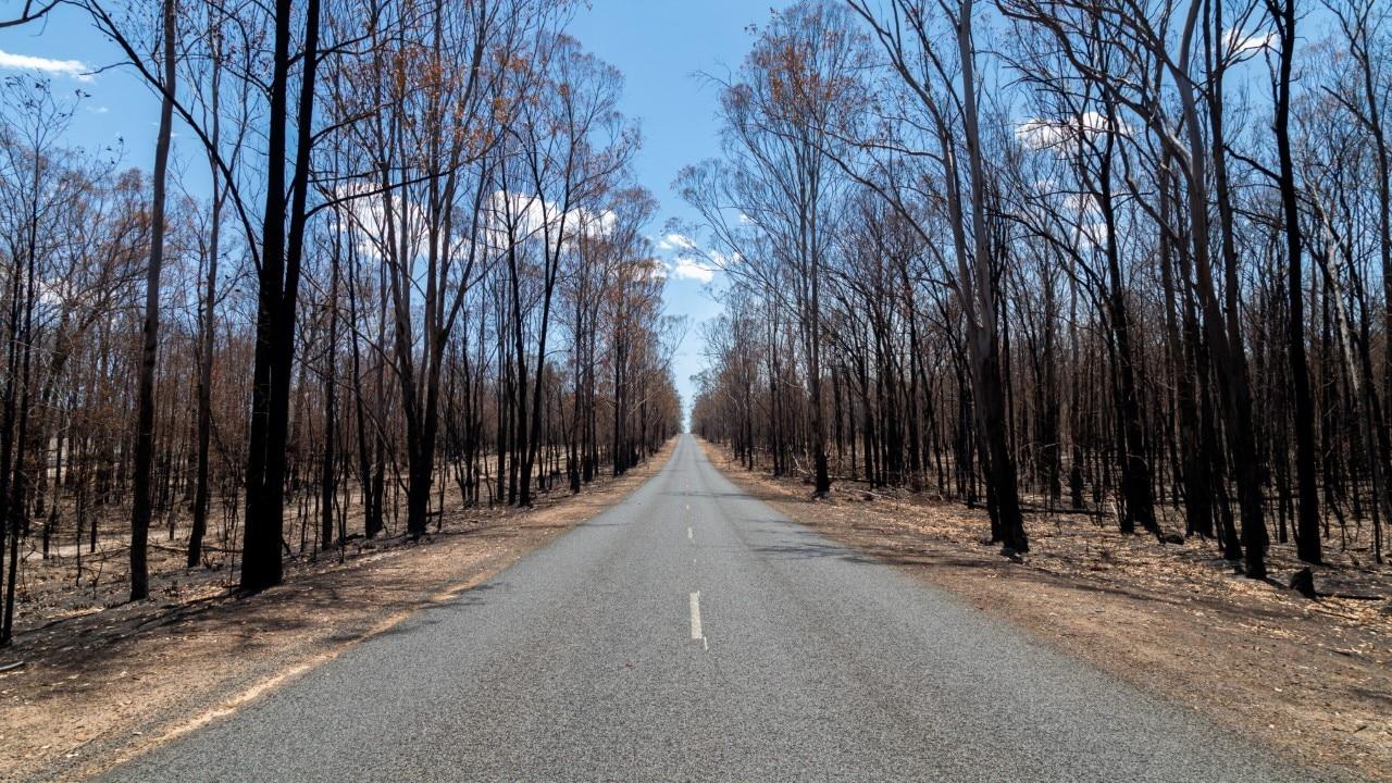 Bushfire damages (Getty Images)
