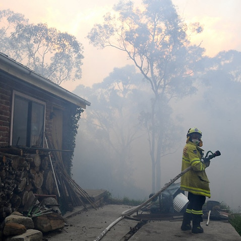 NSW Rural Fire Service and Fire and Rescue NSW personnel conduct property protection as a bushfire burns in Woodford NSW, Friday 8 November, 2019.