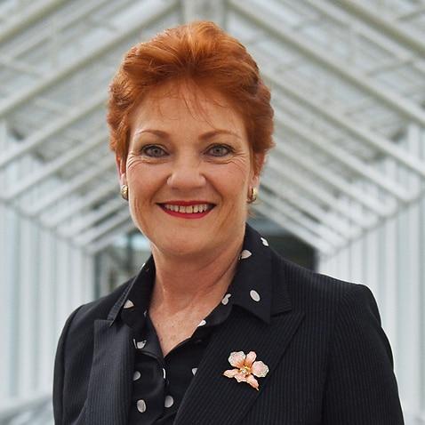 One Nation leader Pauline Hanson