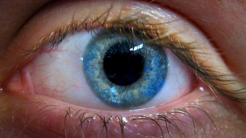 The vitamin supplement that could prevent glaucoma blindness