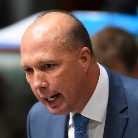 Australian Home Affairs Minister Peter Dutton is considering refugee visas for white South African farmers.