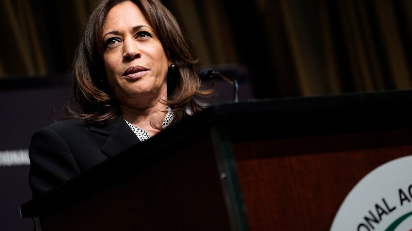 Image for read more article 'The Australian's cartoon of Kamala Harris labelled racist: 'This sort of commentary diminishes our society''