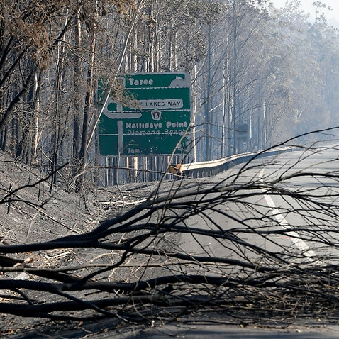 The remains of a fire which burnt out bush along the Pacific Highway south of Taree, Saturday, November 9, 2019.  (AAP Image/Darren Pateman) NO ARCHIVING, EDITORIAL USE ONLY