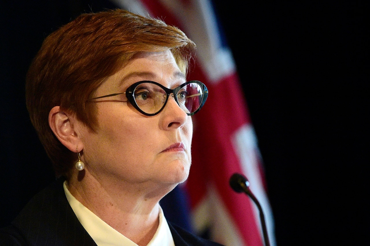 Marise Payne has condemned the video.