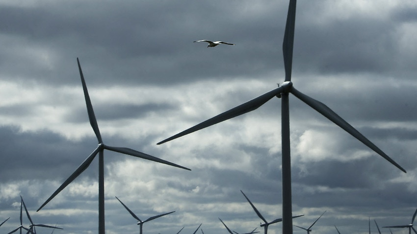 The Australian Medical Association (AMA) and Australia's National Health and Medical Research Council have found no link between wind farms and health effects.