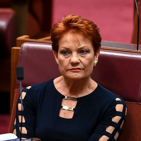 Pauline Hanson has been part of the Australian political scene for more than 20 years.