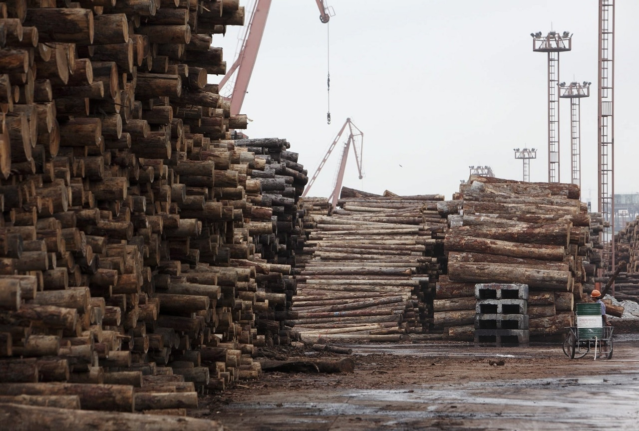 Workers walk past rolls of imported timber at a dock in Shanghai, China.